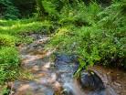 Warmia,rzeka Łyna