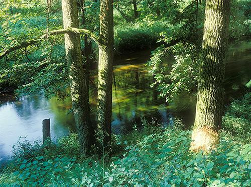 Warmia rzeka Pasłęka
