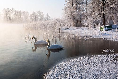 Mazury, jezioro Tyrkło