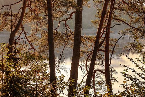 Jezioro Ustrych