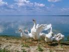 Mazury, jezioro Śniardwy