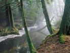 Rzeka Koniuszanka