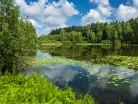 Jezioro Żbik