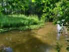 Rzeka Krutynia