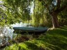 Wierzba i łódka