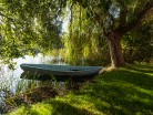 Letni pejzaż , wierzba i łódka