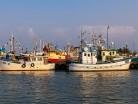 Port rybacki, Władysławowo