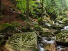 Potok w Sudetach