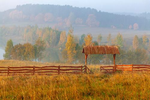 Poranne mgły nad jeziorem