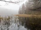 Mgliste jezioro