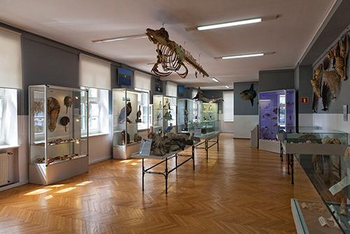 Świnoujście Muzeum Morskie