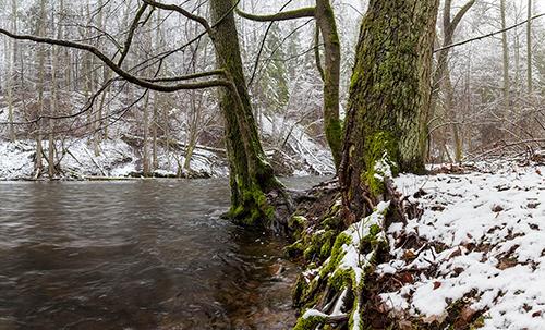 Rzeka zimą