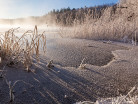 Jezioro we mgle