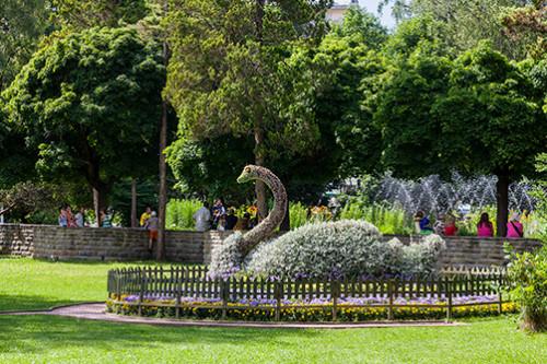 Krynica park